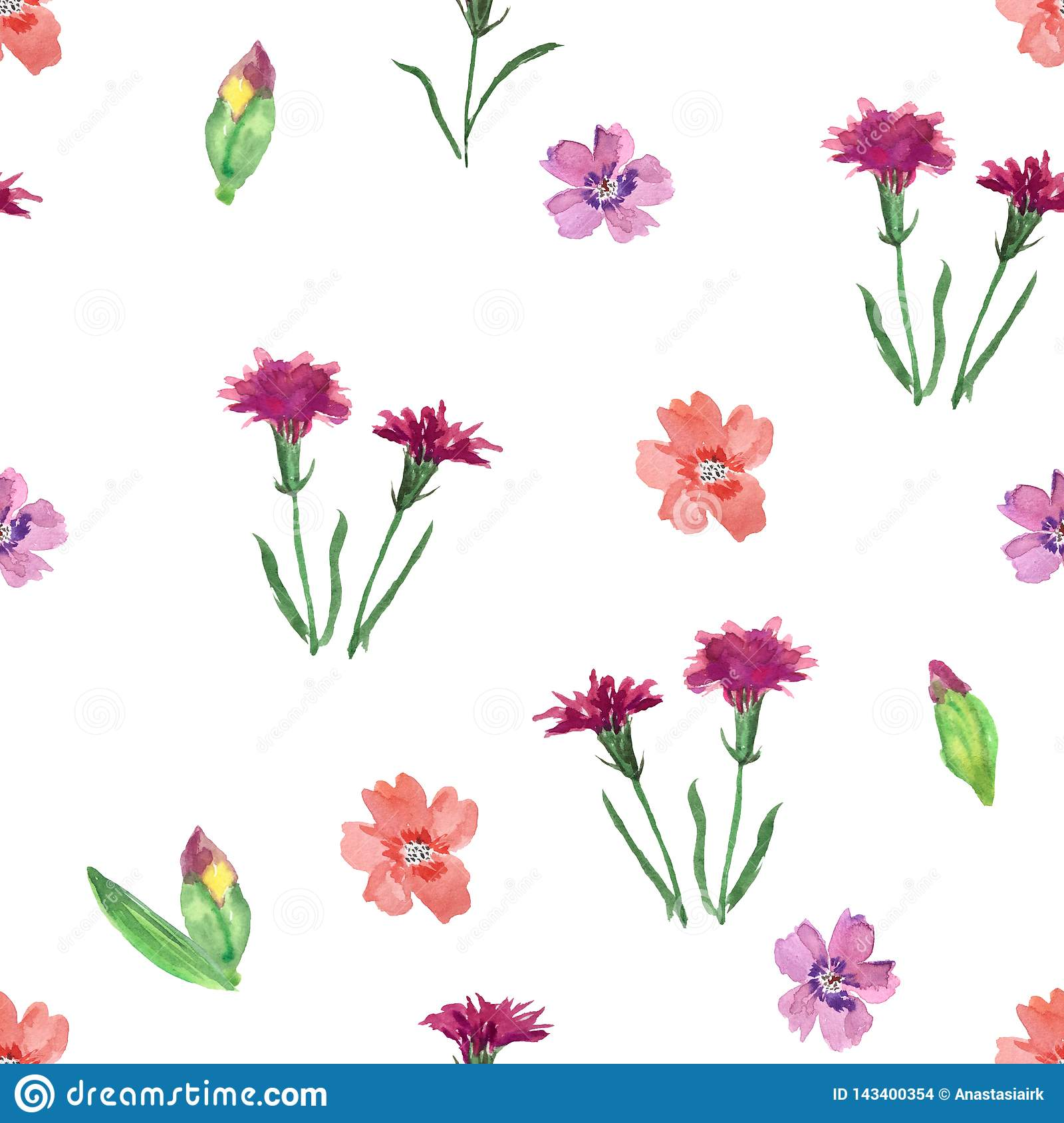Seamless pattern with wild flowers on a white background.