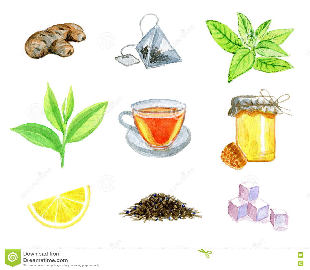 Ginger Desenho in mint tea stock illustrations – 2,398 mint tea stock illustrations