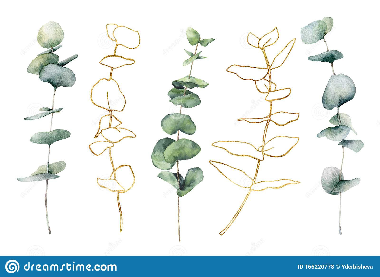 Watercolor Set With Golden Eucalyptus Hand Painted Line Art Branches And Leaves Isolated On White Background Floral Stock Illustration Illustration Of Delicate Branch 166220778