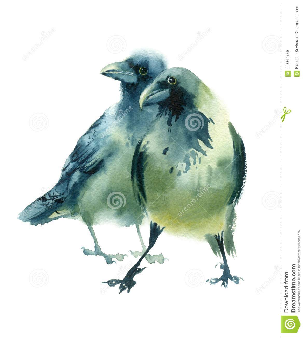 Watercolor sketch of black gray birds stock illustration