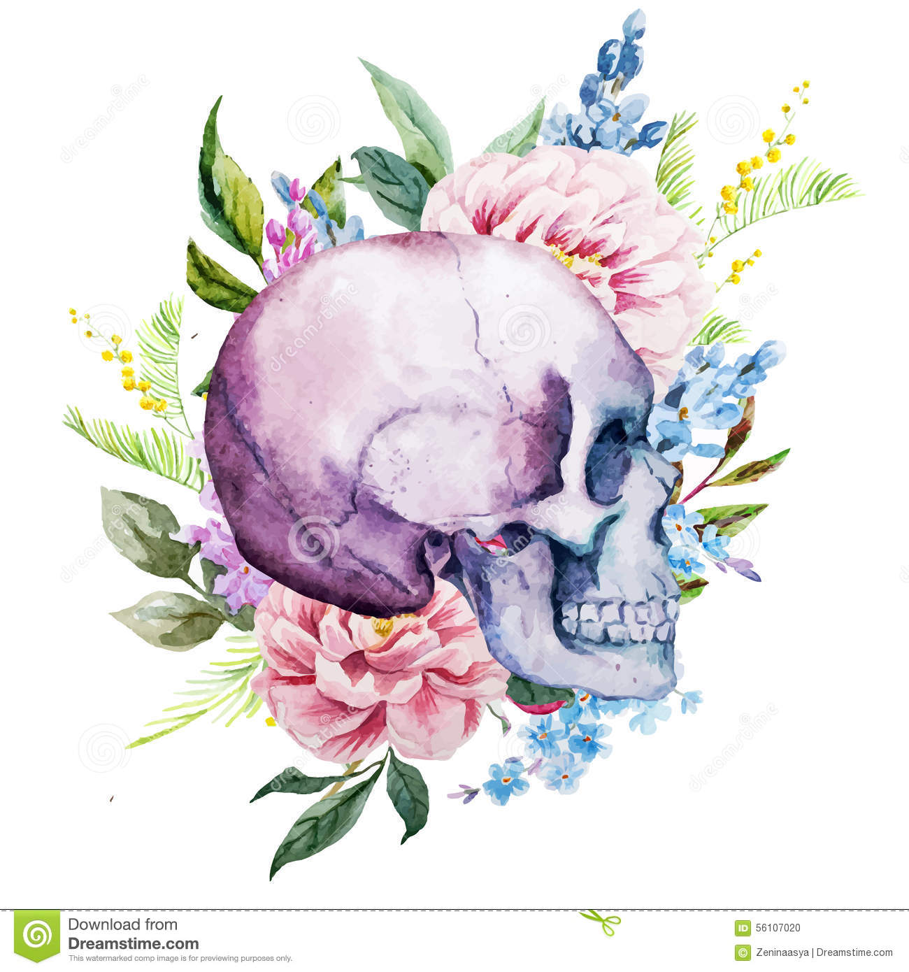 Watercolor Skull With Flowers Stock Vector Image