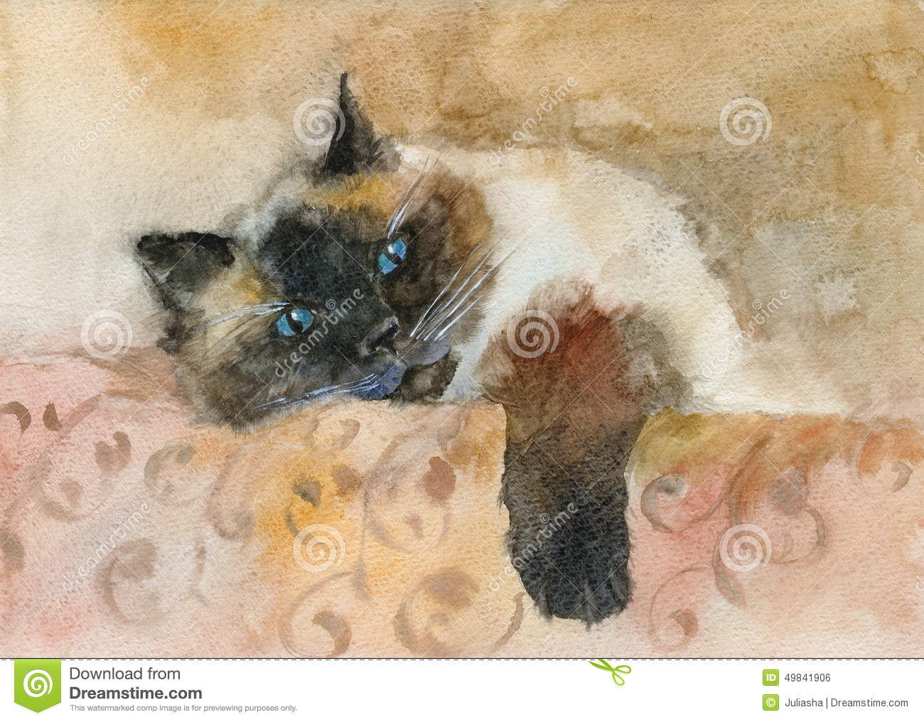 Watercolor Sleeping Color point Cat Stock Illustration Image