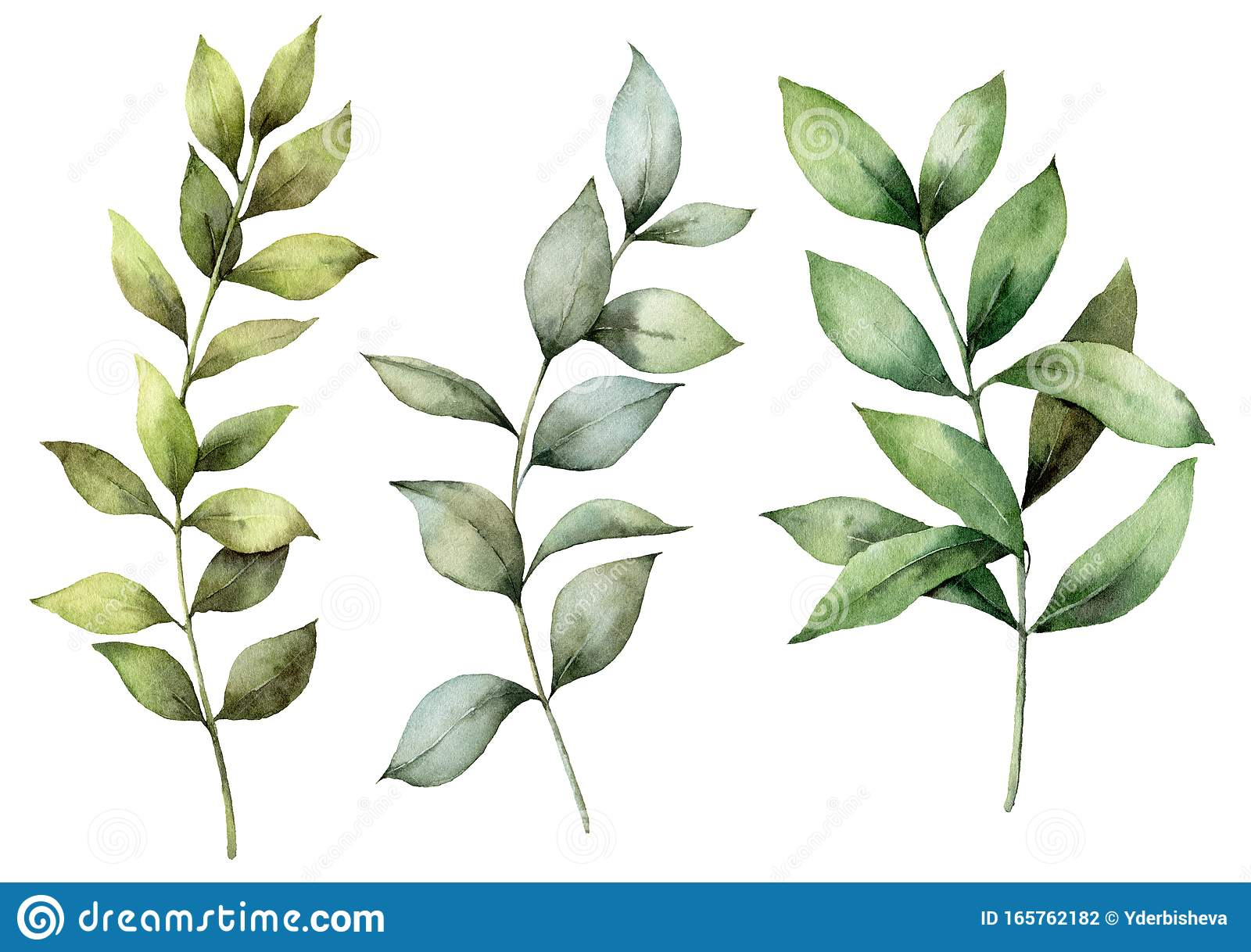 Watercolor Spring Branches Set For Easter Hand Painted Eucalyptus Thick Branch And Leaves Isolated On White Background Stock Illustration Illustration Of Greenery Delicate 165762182