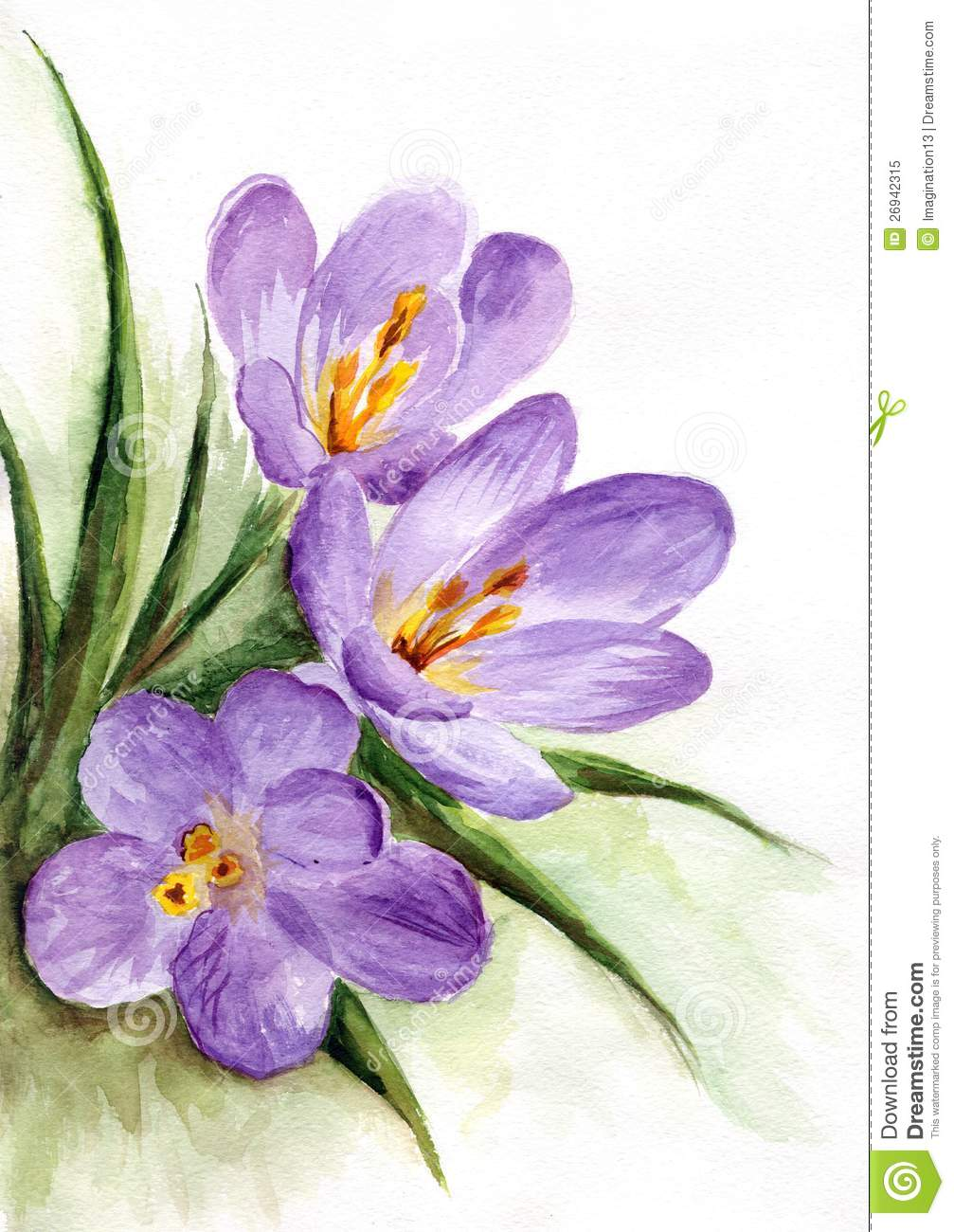 Watercolor spring flowers royalty free stock photo for Spring flowers watercolor