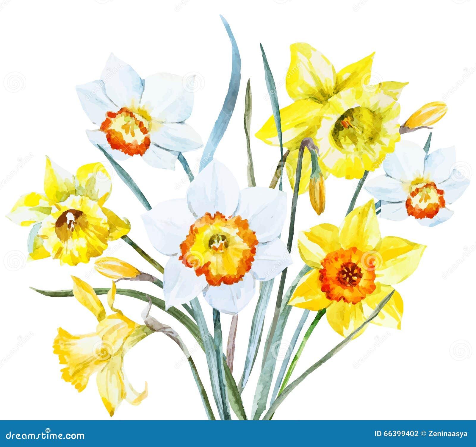 Watercolor spring flowers stock vector illustration of for Spring flowers watercolor