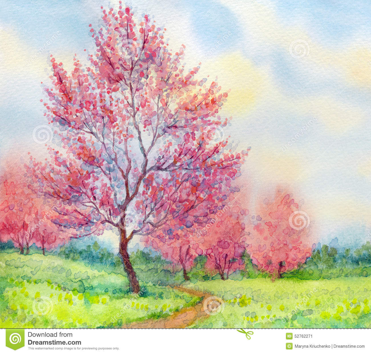 Watercolor Spring Landscape. Flowering Tree In A Field ...