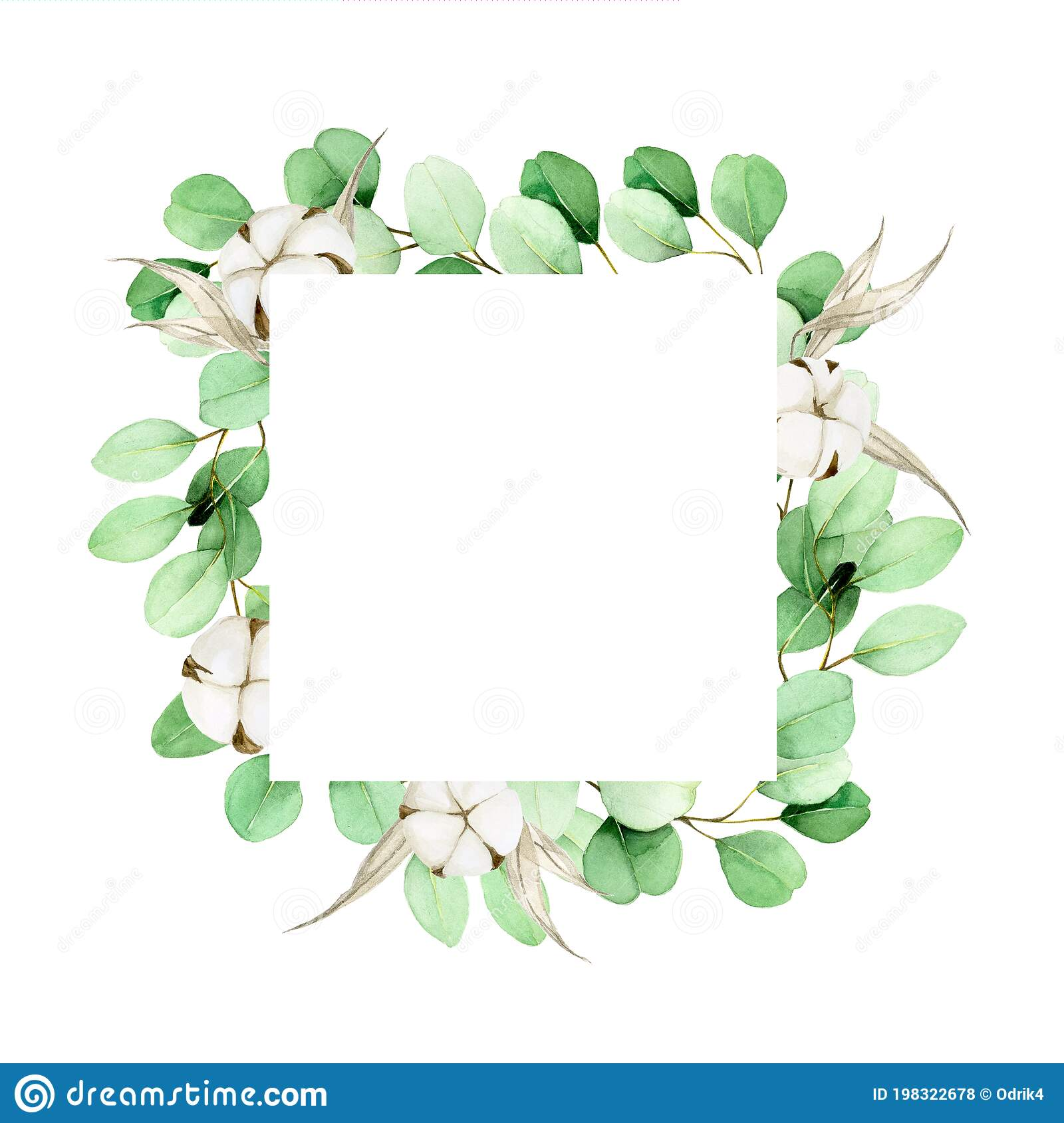 Watercolor Square Frame With Eucalyptus Leaves And Cotton Flowers ...