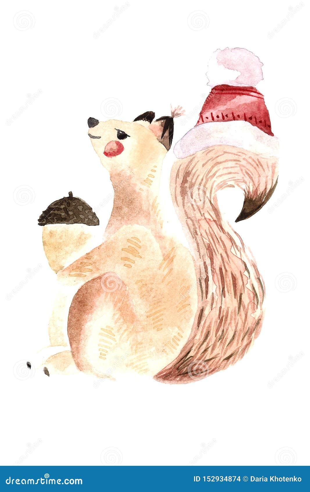Watercolor squirrel with nut