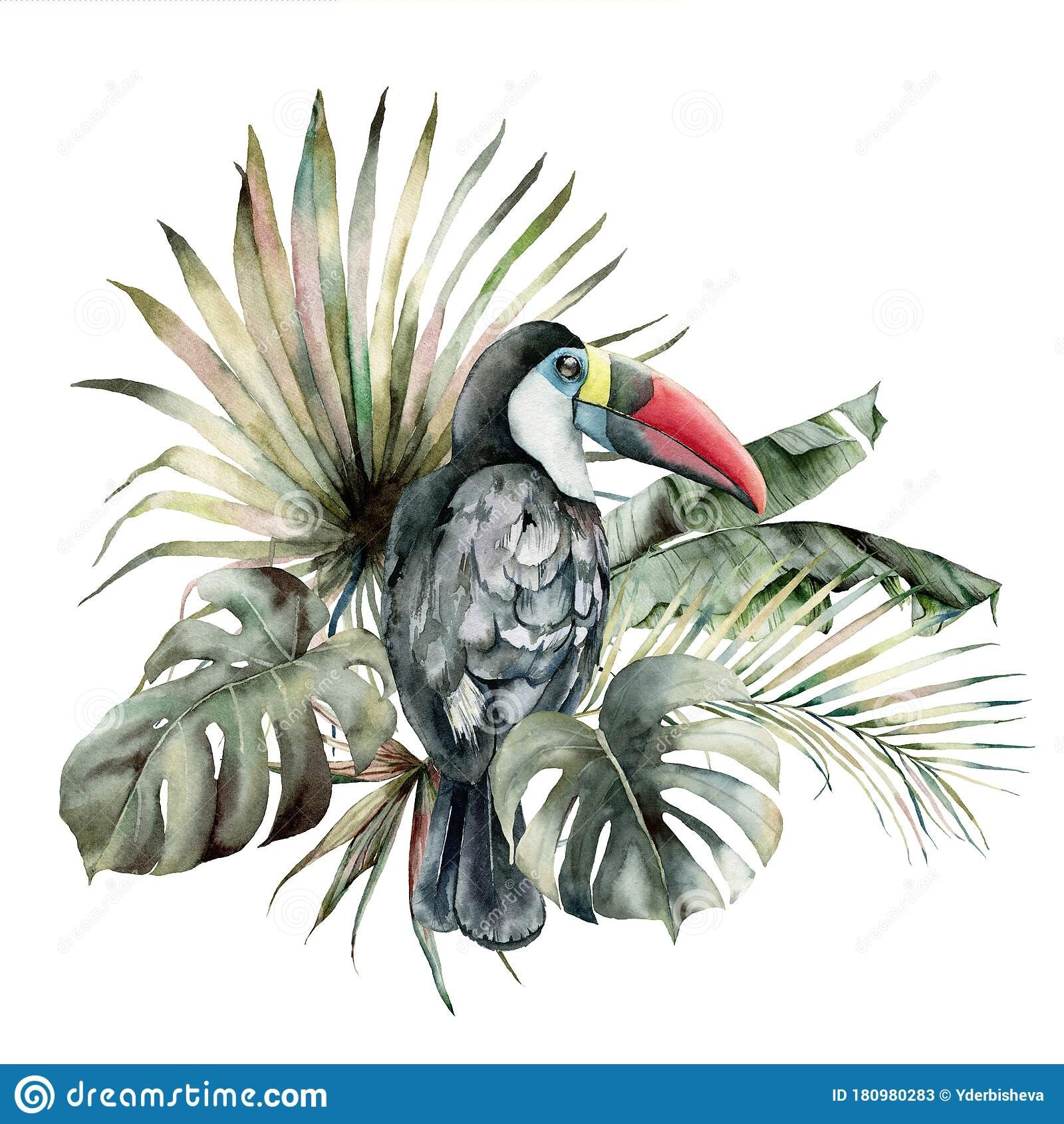 watercolor tropical card with toucan and palm leaves hand