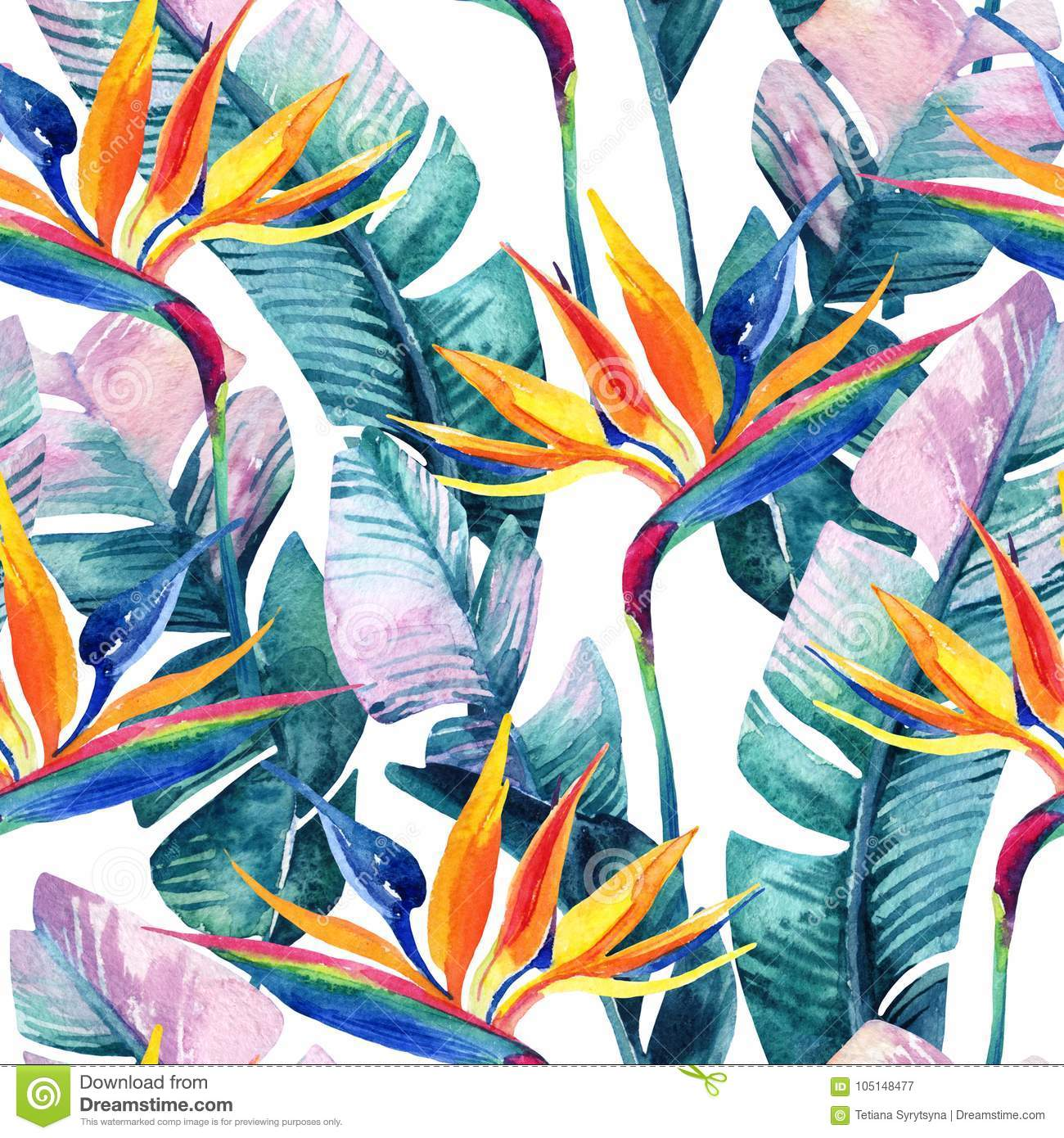 Watercolor Tropical Seamless Pattern With Bird-of-paradise ... on bird of paradise companion plants, bird of paradise quilt pattern, bird of paradise plant varieties, bird of paradise seed germination, bird of paradise flowers delivered, bird of paradise plant problems, bird of paradise hardiness zone, bird of paradise bedding, bird of paradise plant diseases, bird of paradise houseplant care, bird of paradise tree care,