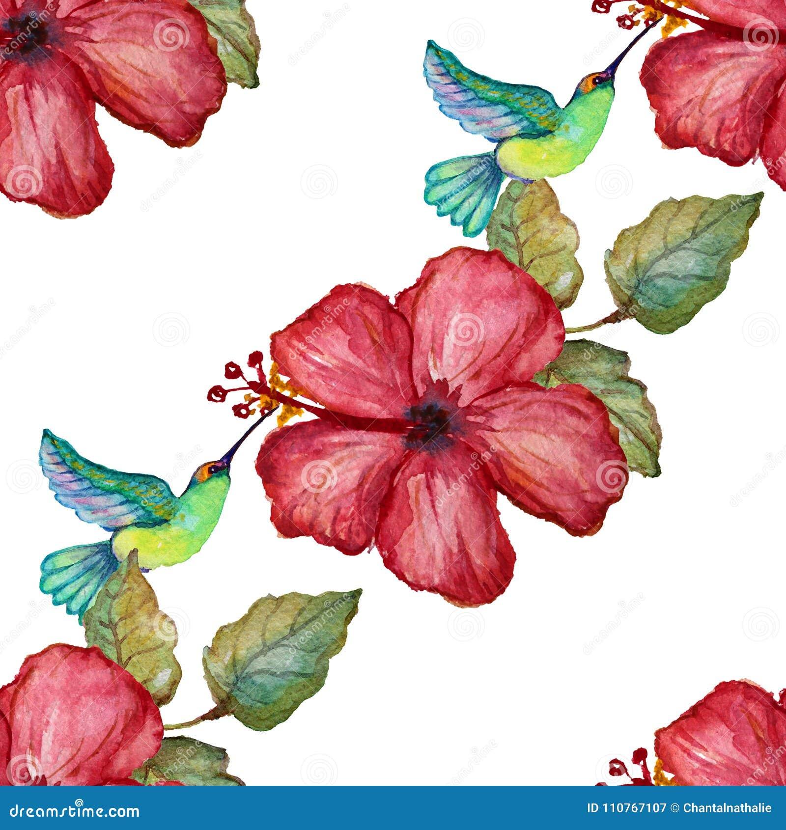 Colibri Hibiscus watercolor tropical seamless pattern stock illustration