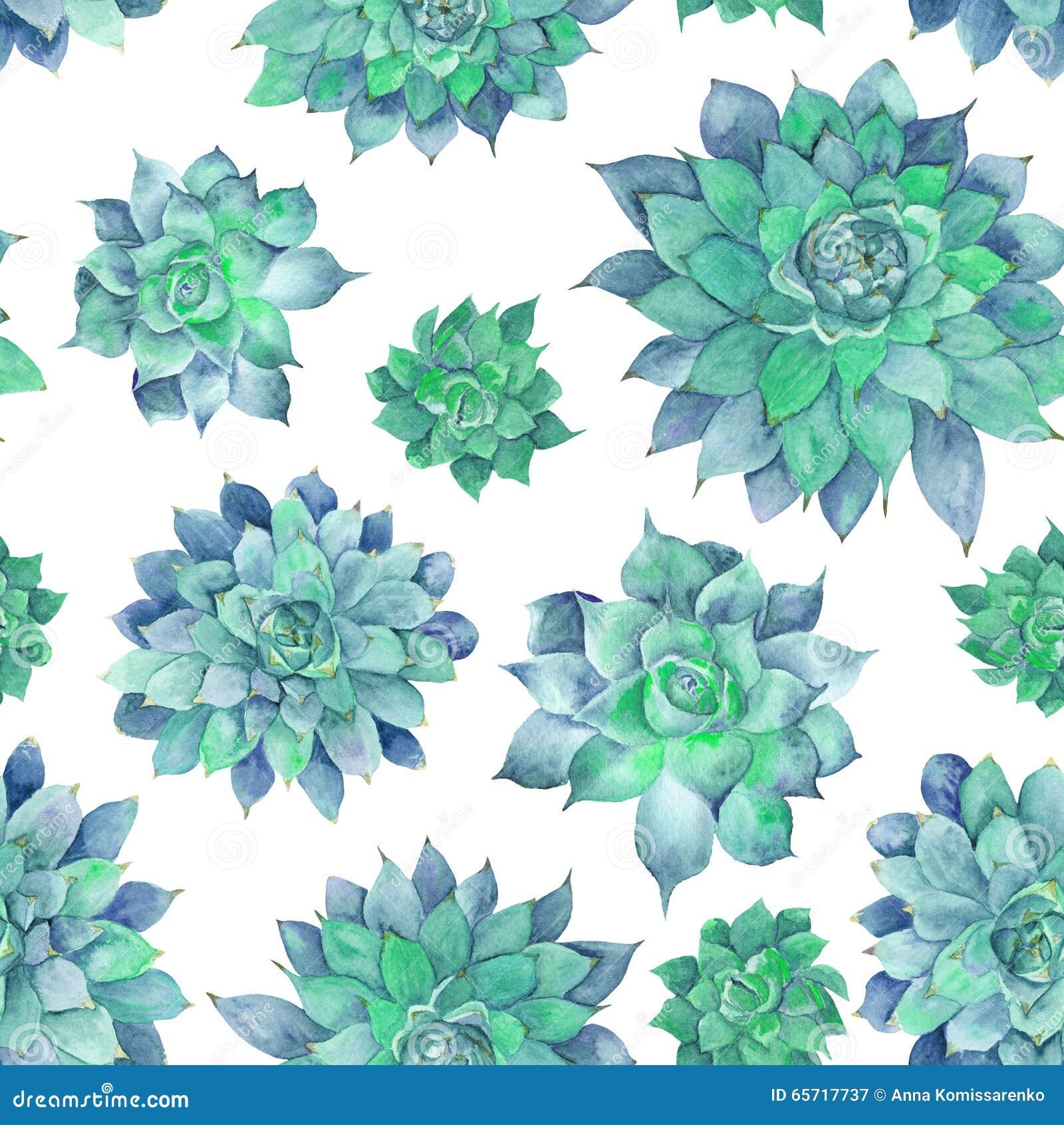 Succulent Desktop Wallpaper Theme
