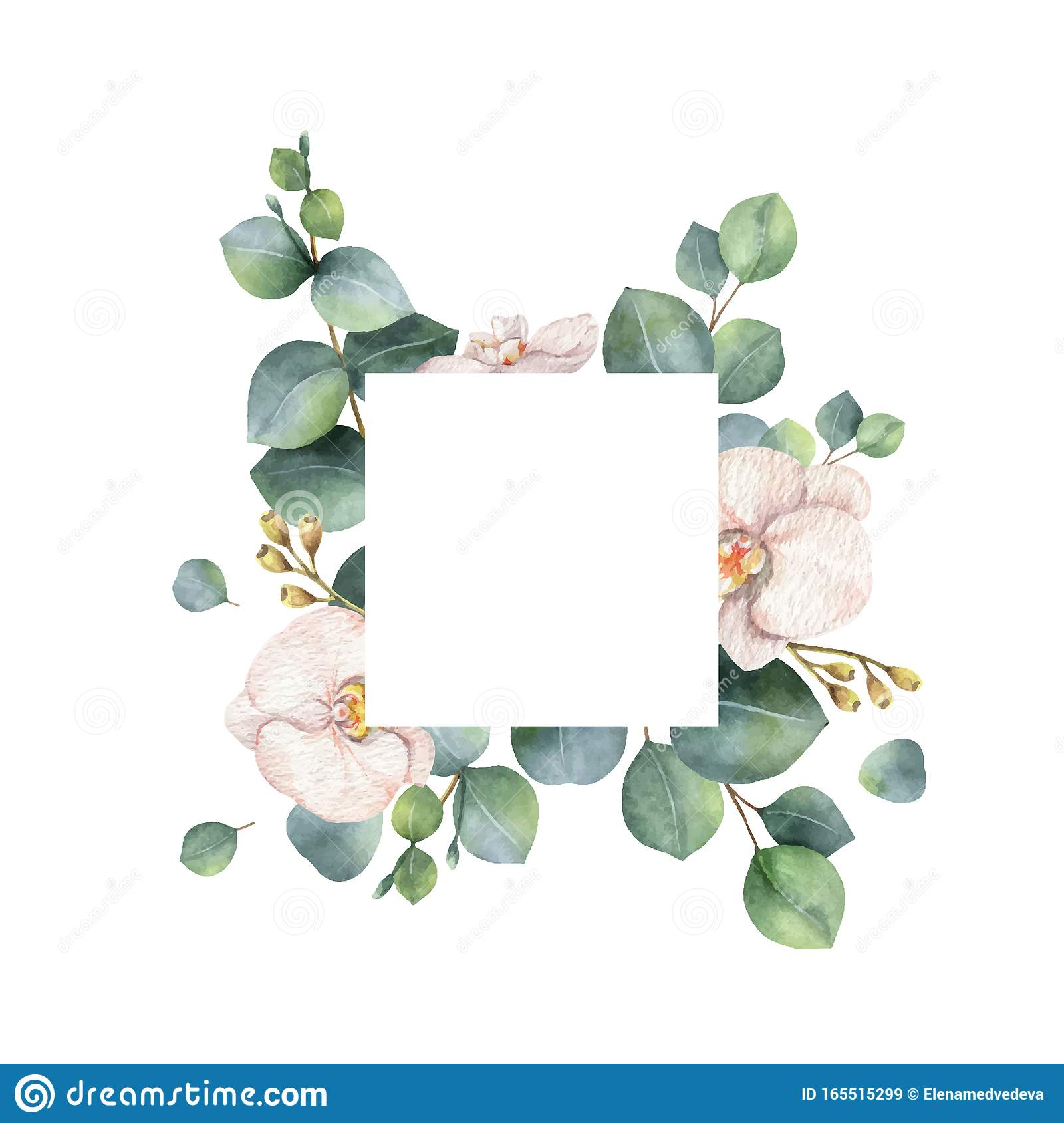 Watercolor Vector Frame With Eucalyptus Branches And Orchid Flowers Stock Vector Illustration Of Natural Aroma 165515299
