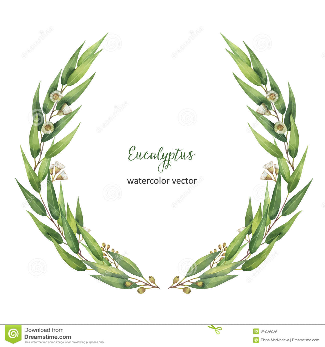 Stock Illustration Watercolor Vector Round Wreath Green Eucalyptus Leaves Branches Healing Herbs Cards Wedding Invitation Posters Save Image84269269 on Gold Circle Frame