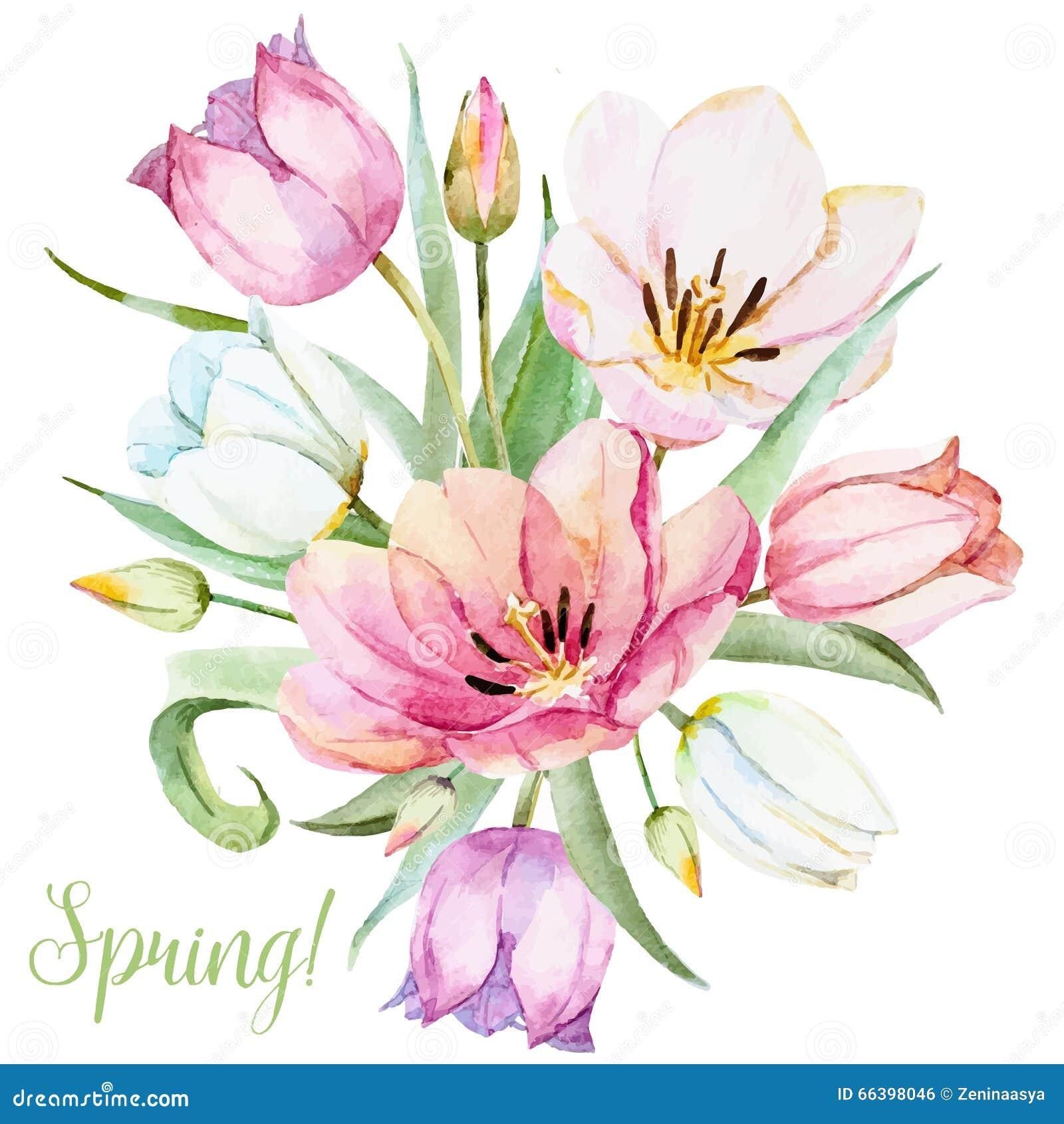 Watercolor vector spring flowers stock vector image for Spring flowers watercolor