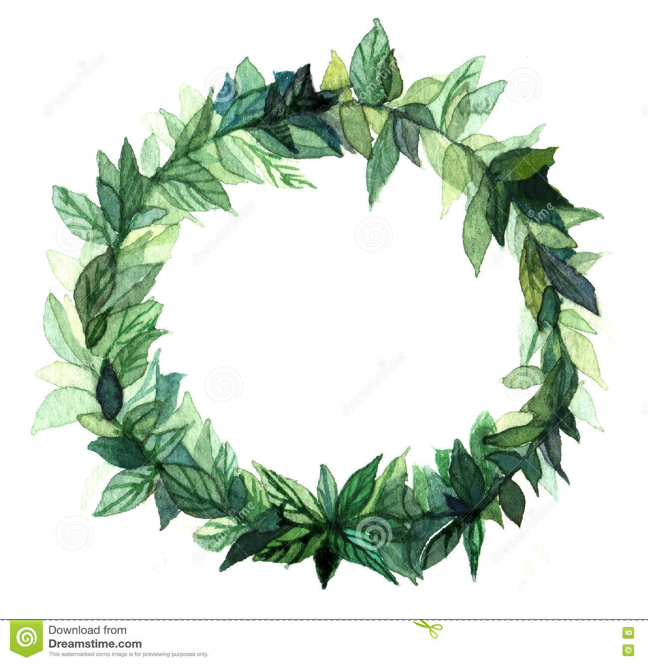 watercolor wreath circle frame spices green floral branches white background illustration banner greeting cards 78713323