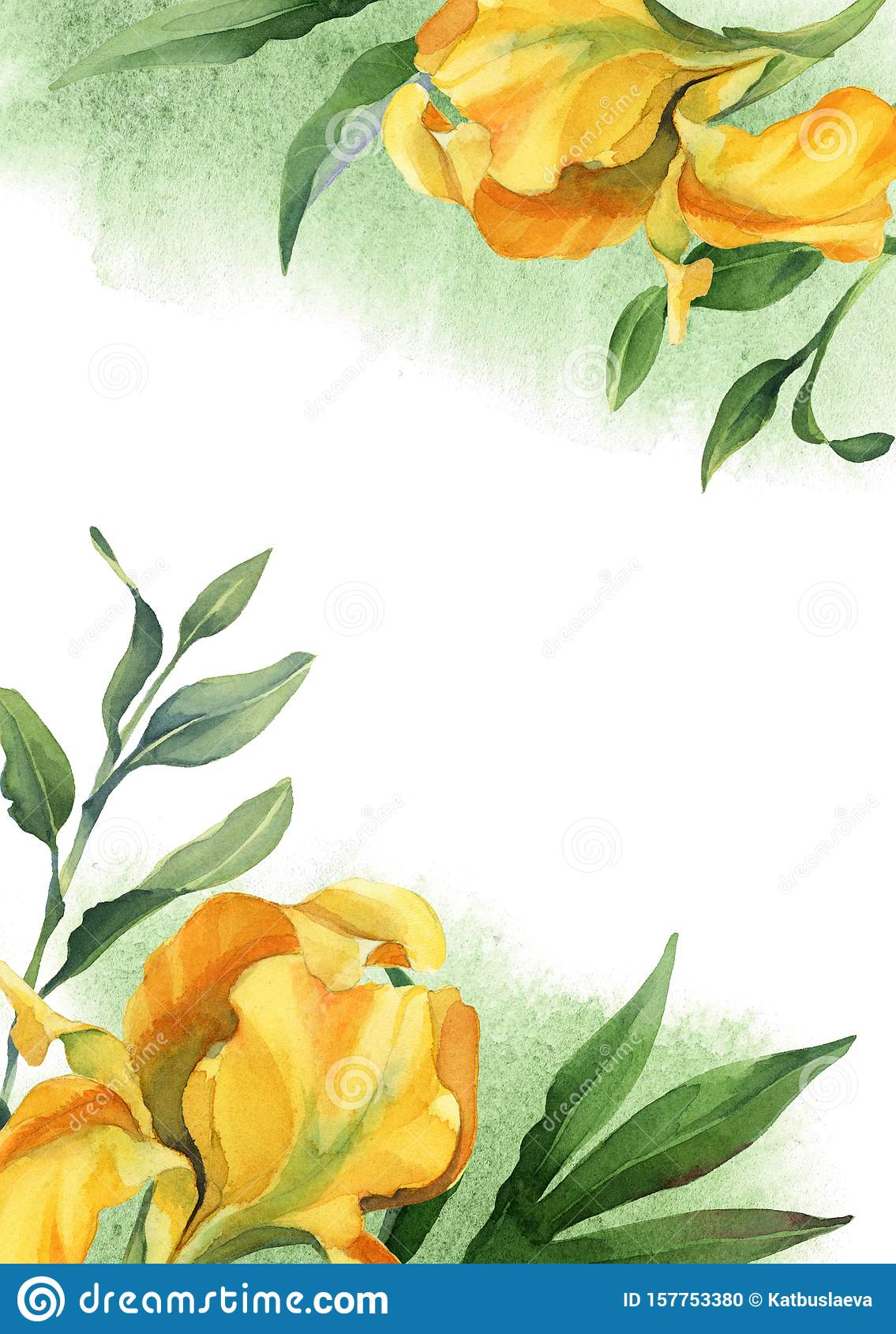 watercolor yellow iris with leaves on white background