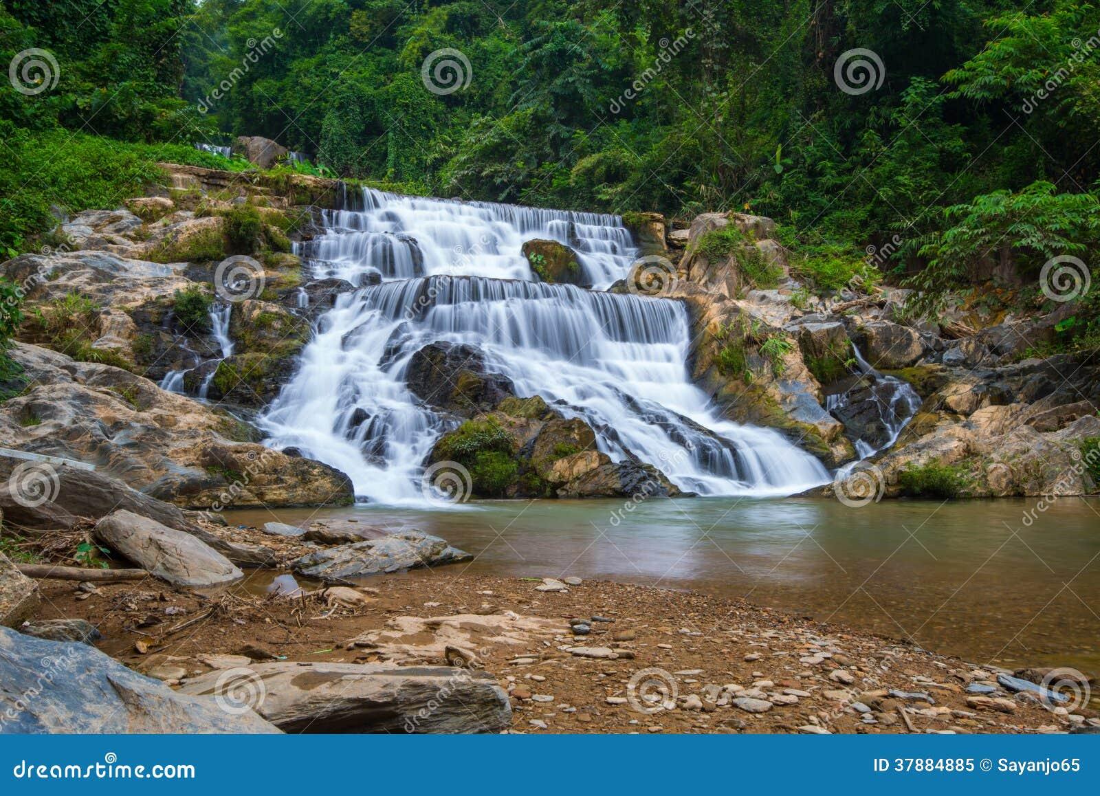 Waterdaling in diepe regenwoudwildernis die wordt gevestigd