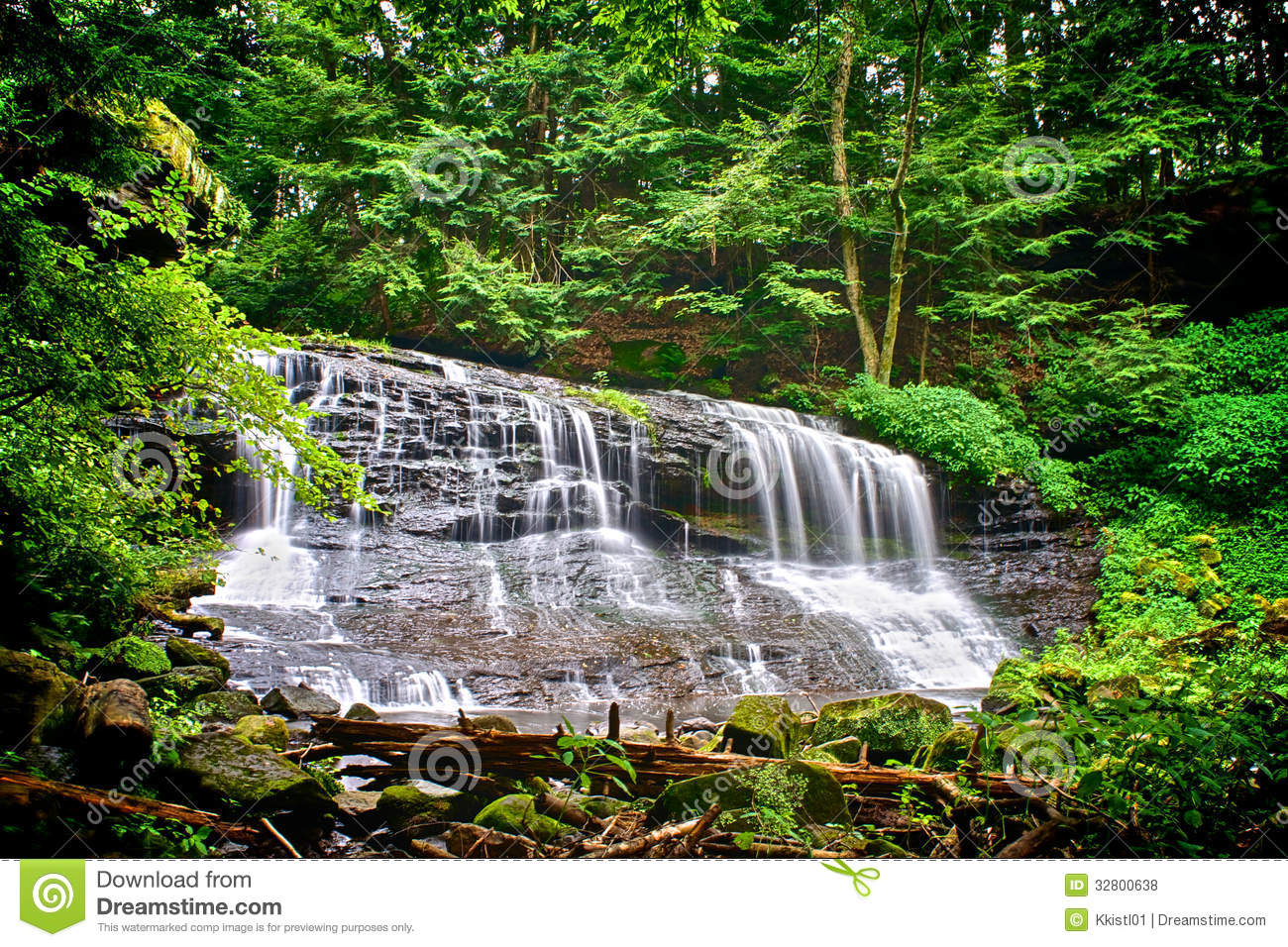 Waterfall Cascade in Forest