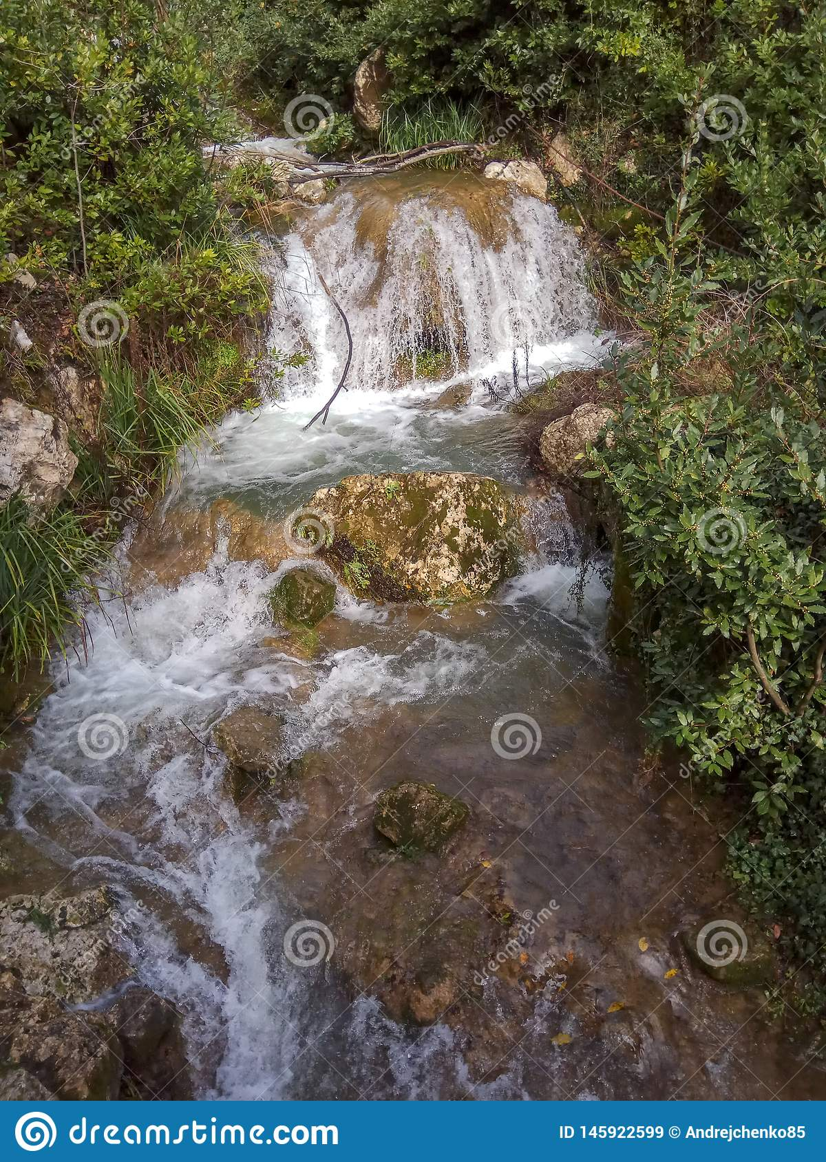 Waterfall cascades down the mountain side over moss covered rocks amid the trees and bushes
