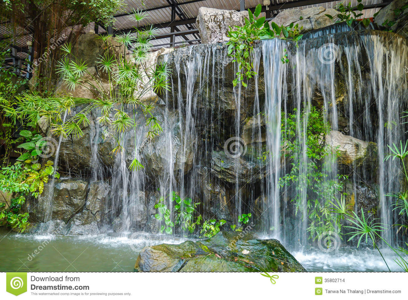 Waterfall stock photo. Image of grasses, restful, flow ...