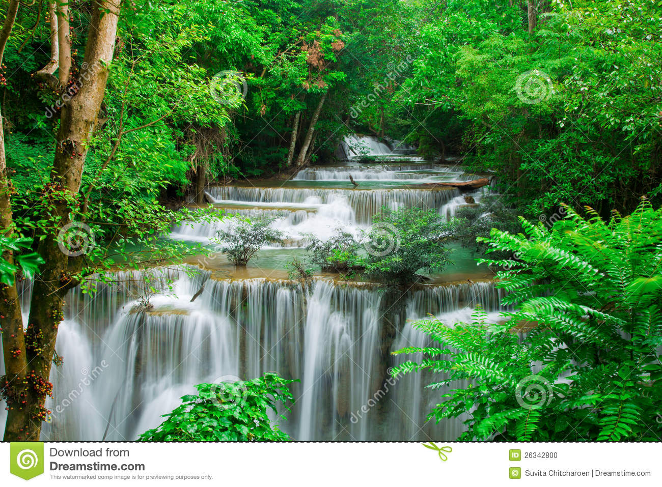 Waterfall In Fresh Green Forest Stock Photo - Image: 26342800