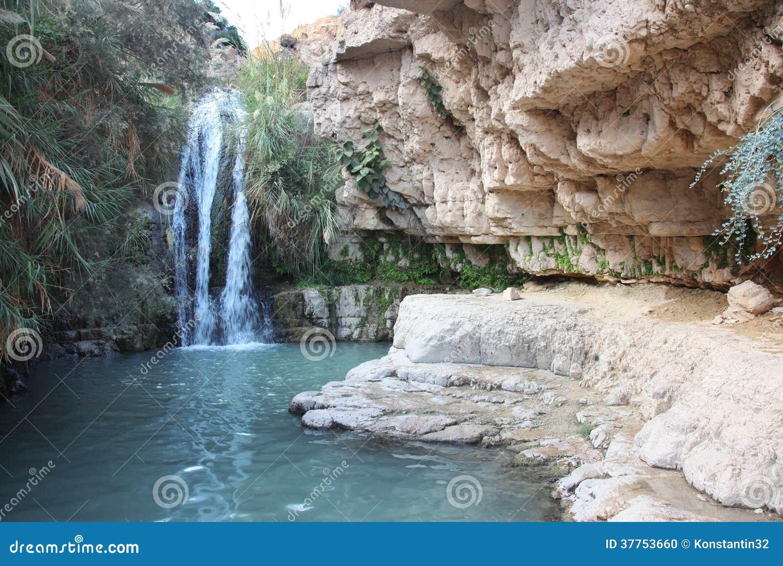 Waterfall in national park Ein Gedi near the Dead Sea in Israel