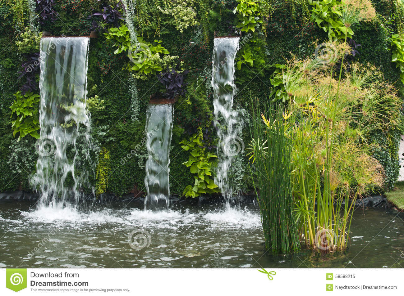 Waterfall with papyrus stock photo image 58588215 for Urban waterfall design