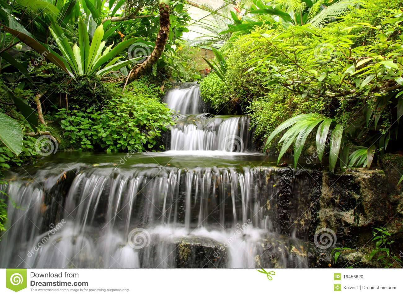 Download Waterfall In The Rain Forest Stock Photo - Image of fall, element: 16456620