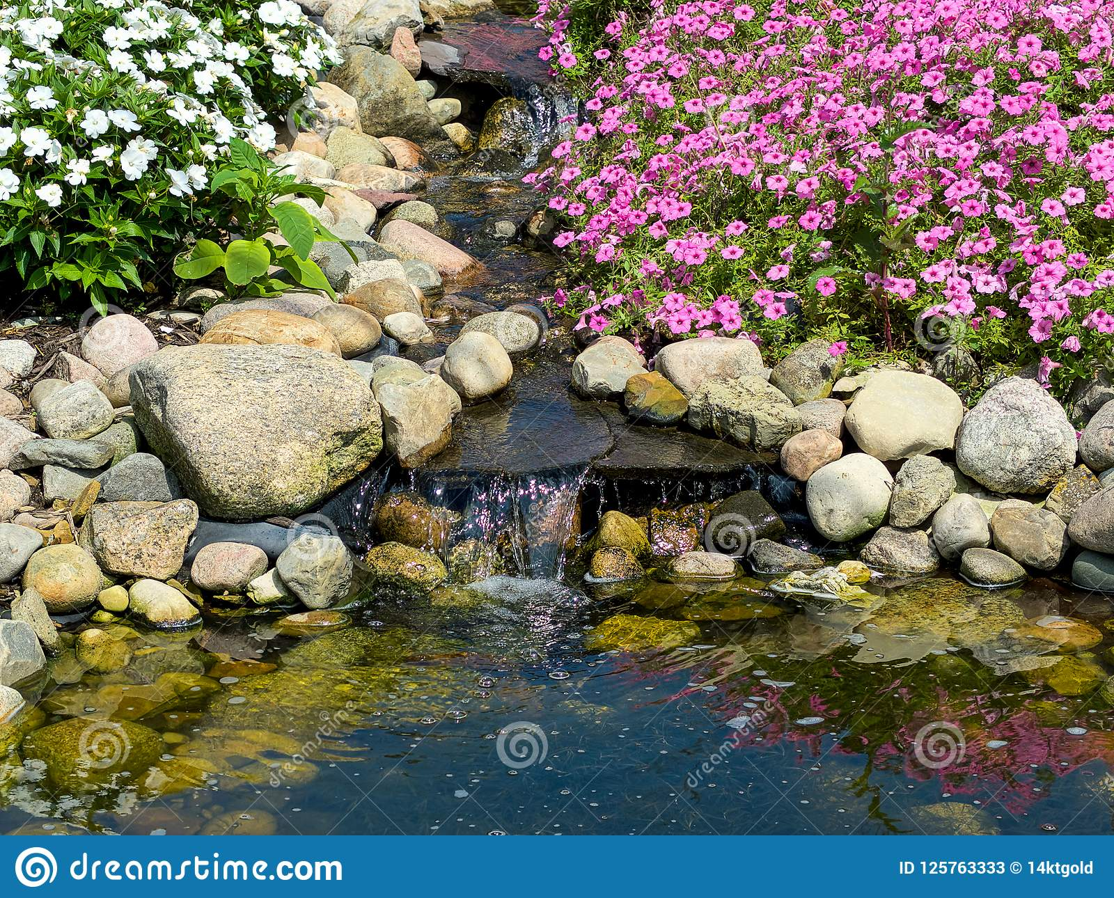 Download Waterfall In Rock Garden With Pond Stock Image   Image Of  Landscape, Garden: