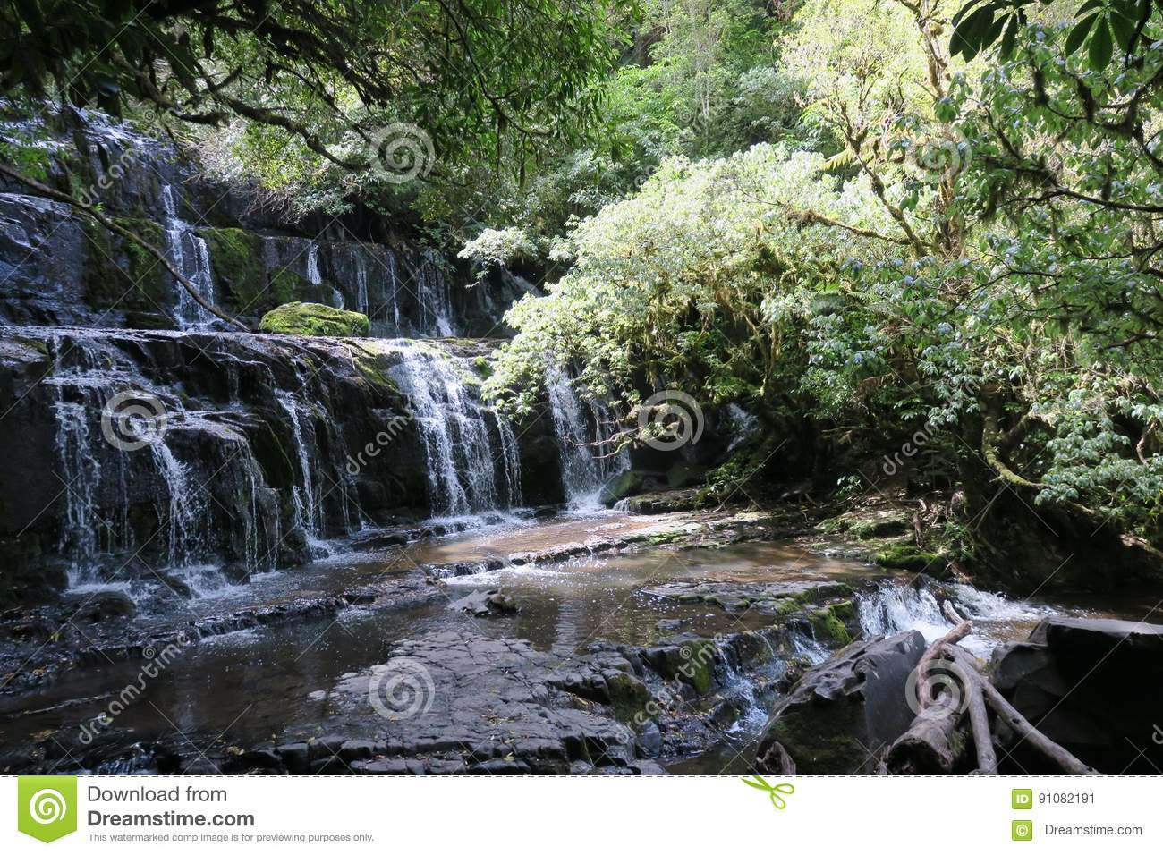 Waterfall Stock Image Image Of Catlins South Zealand 91082191