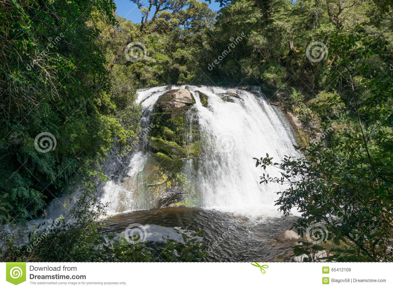 Waterfall At Te Urewera National Park Stock Image - Image of