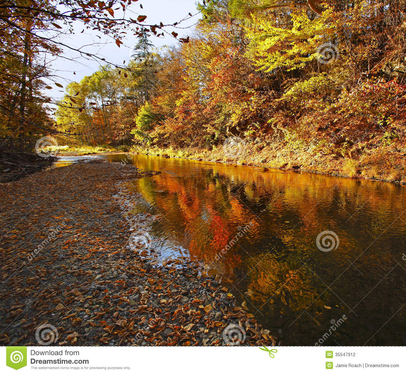 New Brunswick 468: Waterford Trout Creek Autumn Colors Reflection Stock Photo