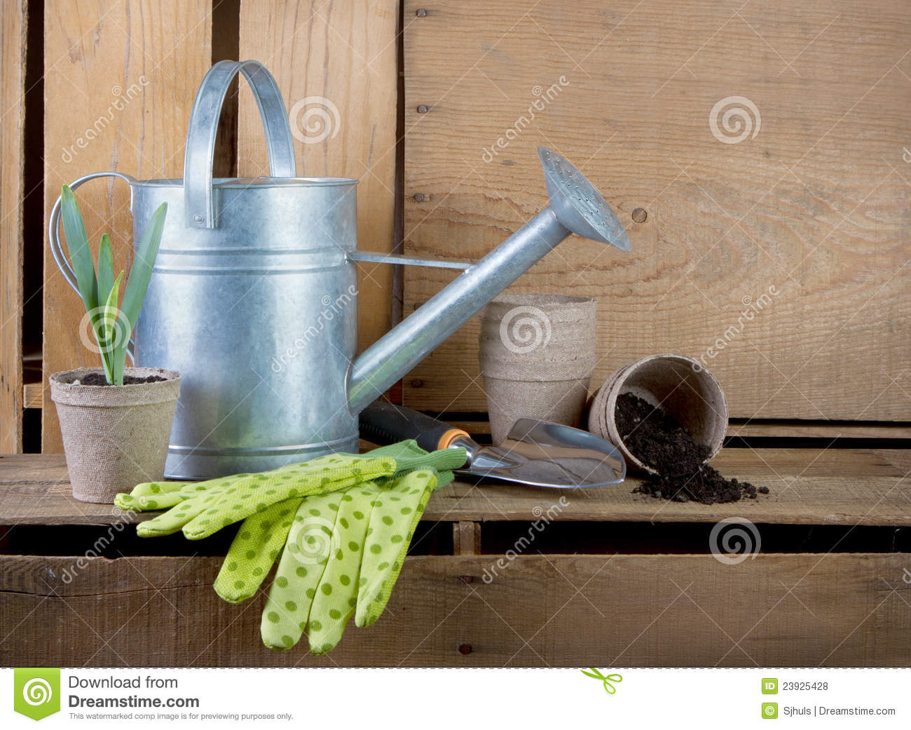 Watering can and gardening tools on wooden crates stock for Gardening tools watering