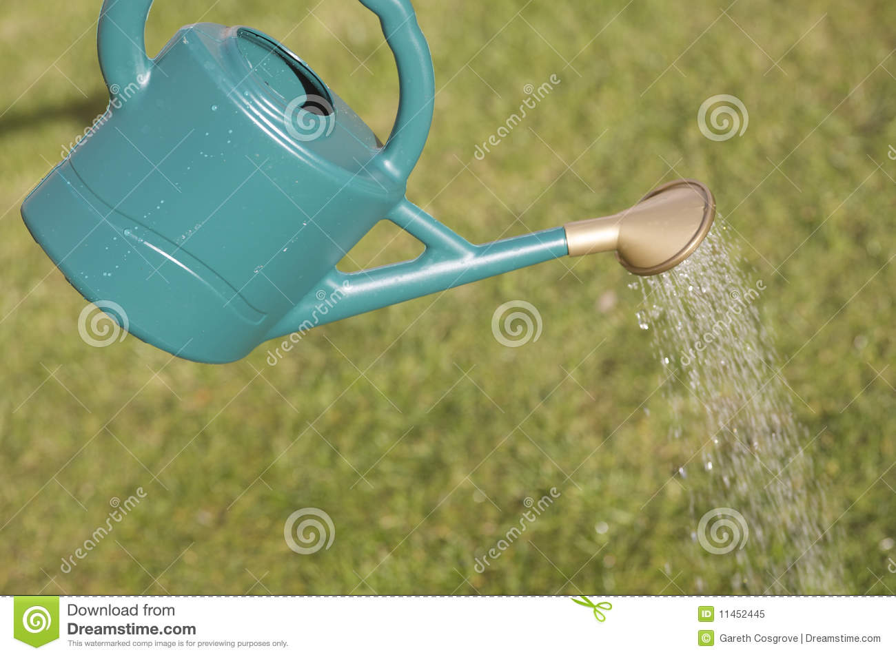 Watering can and grass