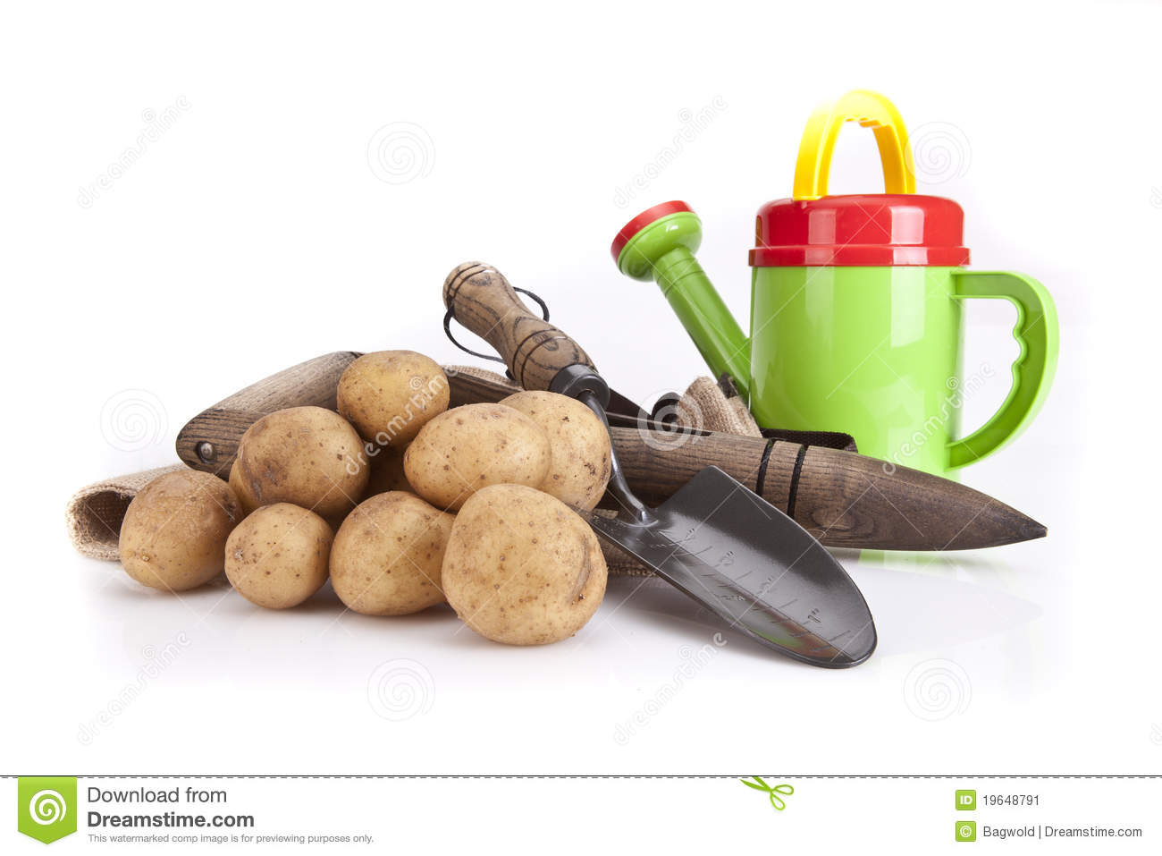 Watering can potatoes and gardening tools stock image for Gardening tools watering