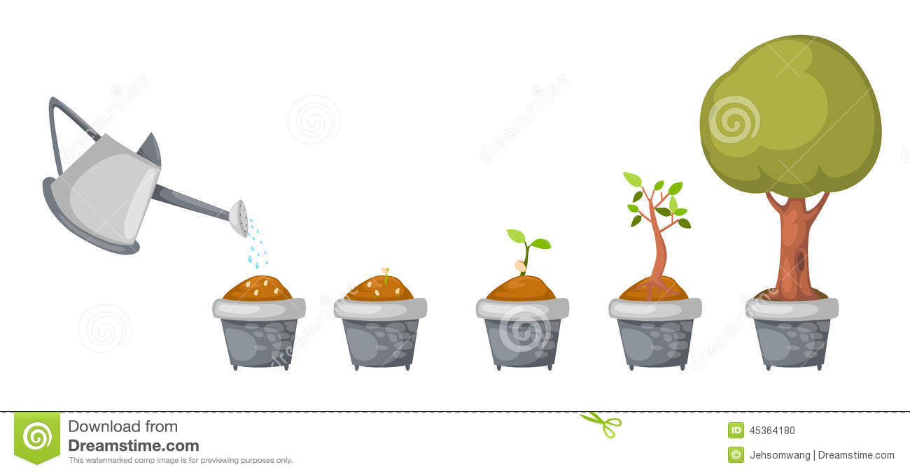 Watering Can With Tree Life Cycle Vector Stock Vector - Image ...