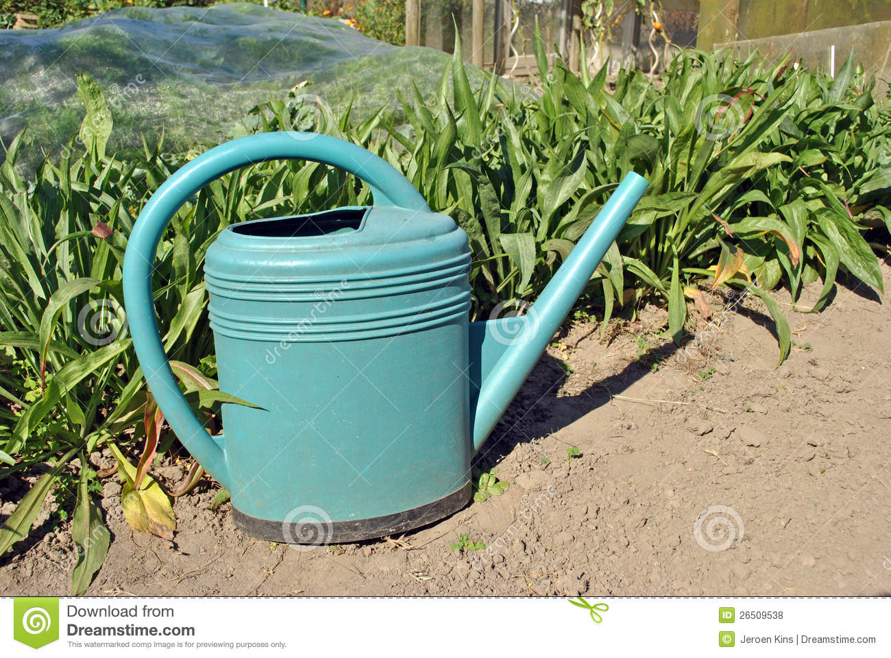 Watering can in vegetable garden stock photo image 26509538 for Watering vegetable garden