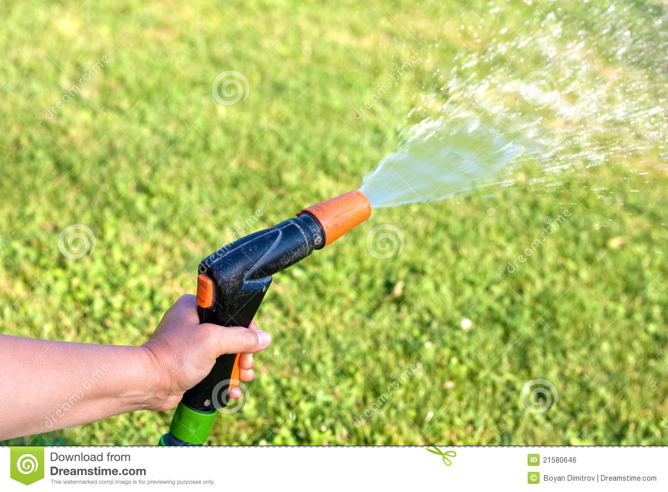 Watering The Grass Royalty Free Stock Image Image 21580646