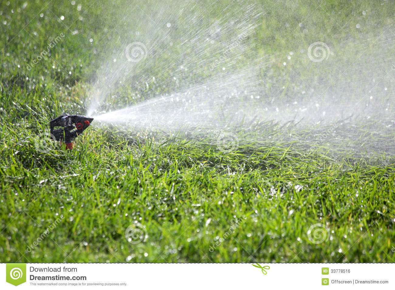 Watering The Grass Royalty Free Stock Image Image 33778516