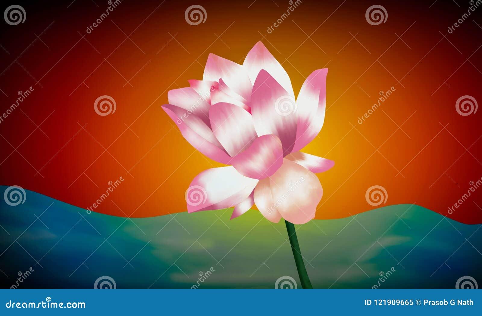 Waterlelie kleurrijke illustratie
