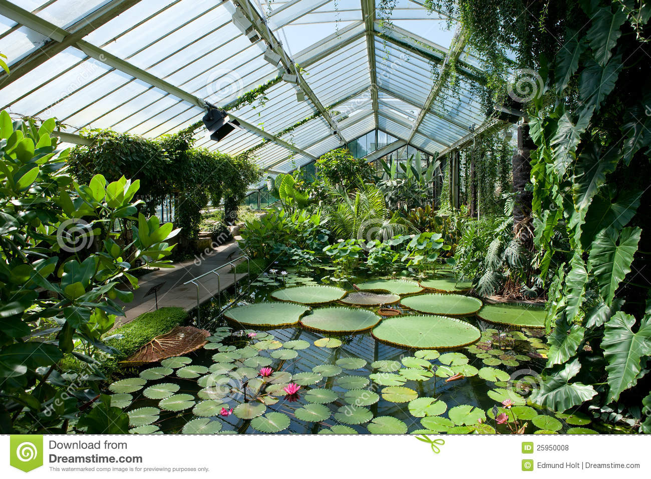 Royalty Free Stock Photos Waterlily House Kew Gardens Image25950008 on plan of mansion house design