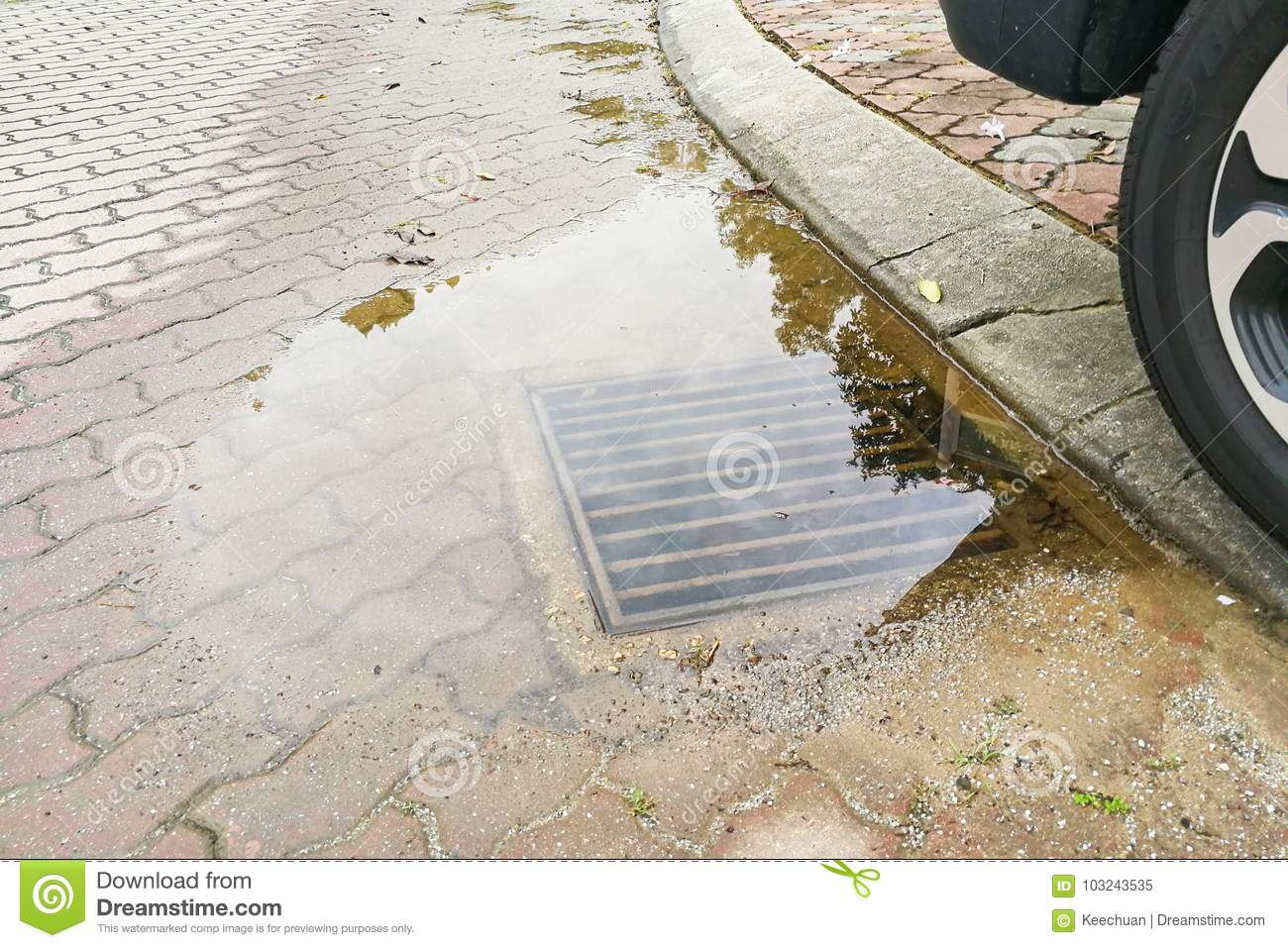 Waterlogged on street due to clogged drainage system