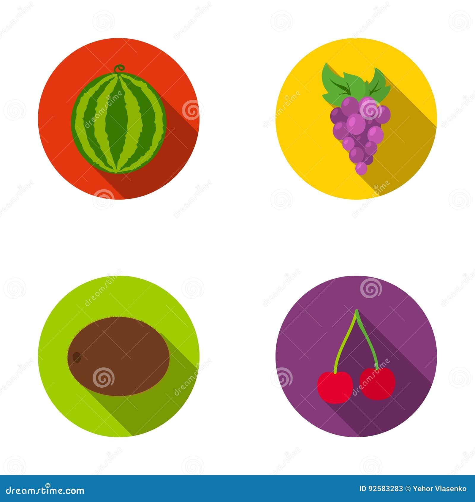 Watermeloen, druiven, kers, kiwi Vruchten geplaatst inzamelingspictogrammen in het vlakke Web van de de voorraadillustratie van h