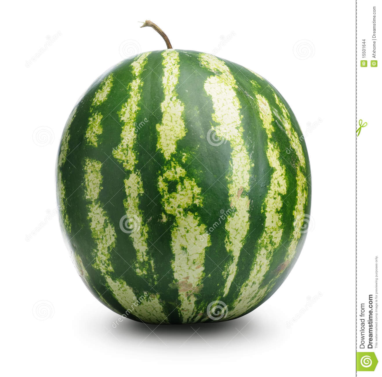 watermelon essay Yes, watermelon is 92 percent water, but that other 8 percent is filled with good nutrition and amazing health benefits.