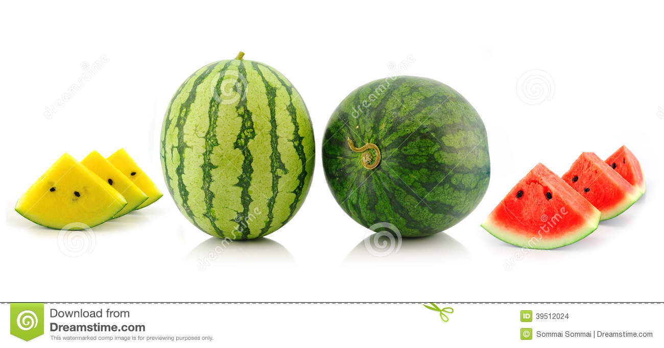 Watermelon on whiite background