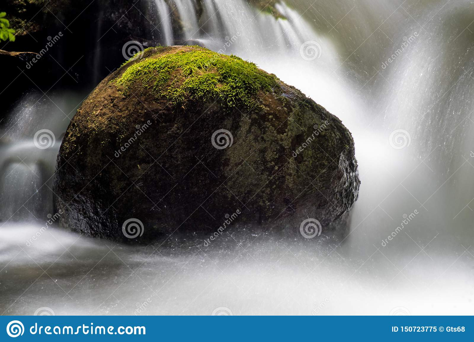 Close-Up Of A Moss Covered Rock Surrounded By Water