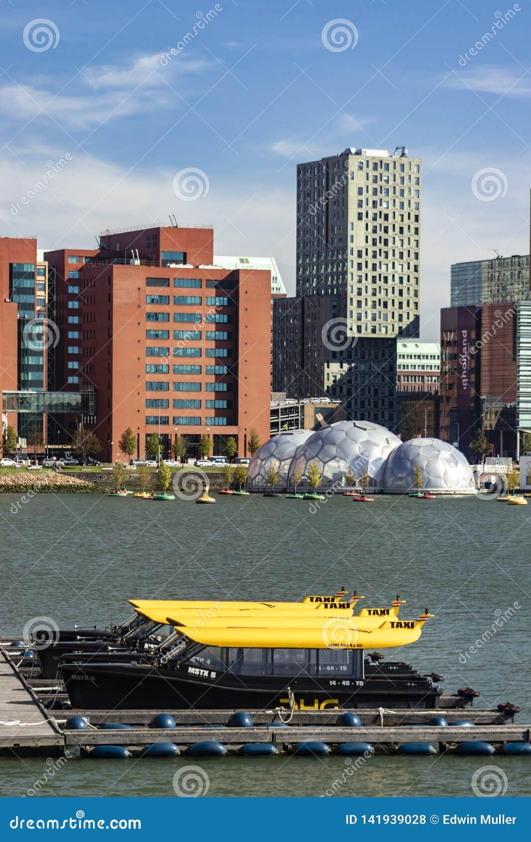 Watertaxi parking w Rijnhaven Rotterdam