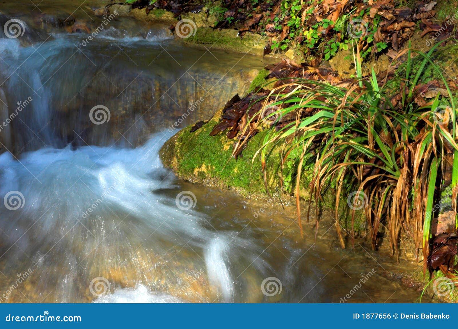 Waterval en groen gras, Sotchi, Rusland