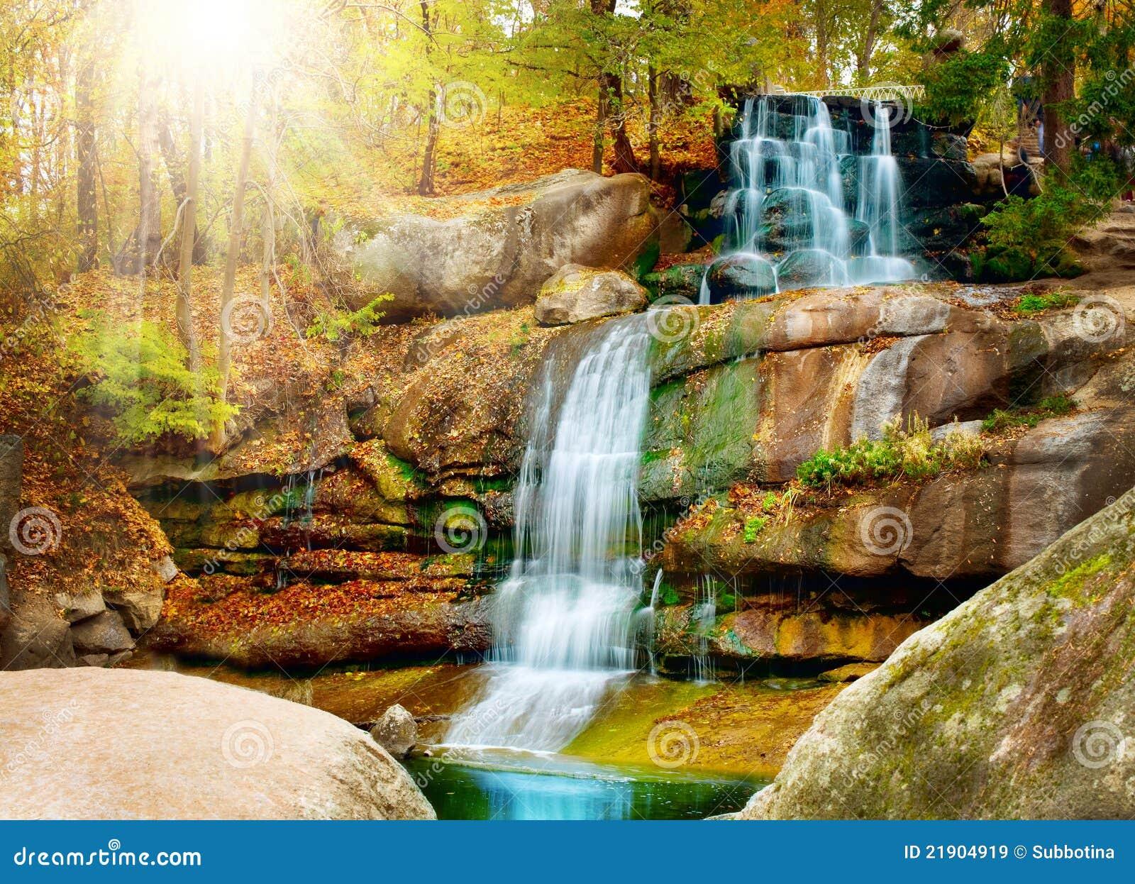 Waterval. Het bos van de herfst